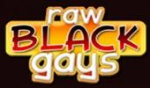 RawBlackGays