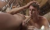 Sexe anal dans une cabane